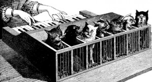 Cat_piano_1883 ddt21