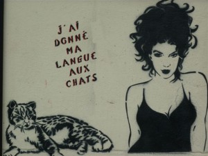 Miss Tic langue aux chats